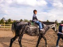 美丽的马和孩子 免版税库存图片