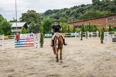 美丽的马和jokey在行动在跑马轨道用障碍设备在竞技场 免版税图库摄影