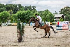 美丽的马和jokey在行动在跑马轨道用障碍设备在竞技场 免版税库存照片
