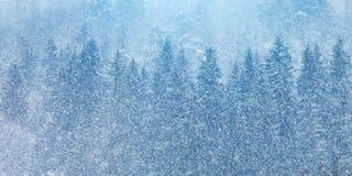 美丽的高山山 一个冬天风景在奥地利 库存照片