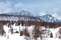 美丽的高山山 33c 1月横向俄国温度ural冬天 免版税图库摄影