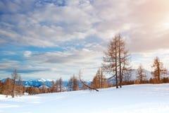 美丽的高山山 33c 1月横向俄国温度ural冬天 图库摄影