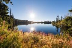 美丽的高山湖落矶山脉包围的Strbske普莱索,庄严自然晴朗的风景,高Tatras,斯洛伐克 图库摄影