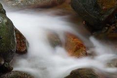 美丽的鱼喜欢与瀑布的石头在一条岩石小河 图库摄影
