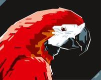 美丽的鹦鹉流行艺术画象  也corel凹道例证向量 图库摄影