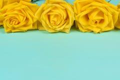 美丽的黄色玫瑰的装饰在蓝色背景的 库存照片