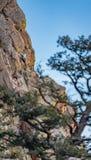 美丽的黄金国峡谷国家公园科罗拉多 图库摄影