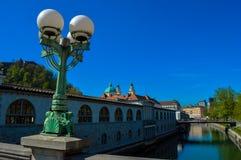 美丽的龙桥梁,卢布尔雅那,斯洛文尼亚 库存照片