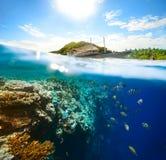 美丽的水下的世界在一个晴天 免版税库存照片