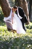 美丽的年轻人在森林里最近婚姻倾斜反对树干的夫妇 免版税库存照片