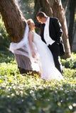 美丽的年轻人在森林里最近婚姻倾斜反对树干的夫妇 免版税库存图片