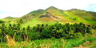 美丽的巴布亚新几内亚 库存照片