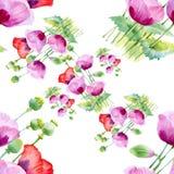 美丽的水彩夏天庭院开花的花无缝的样式 库存照片