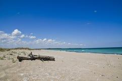 美丽的黑海海滩,沙布拉,保加利亚 库存图片