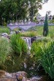 美丽的绿色公园 图库摄影