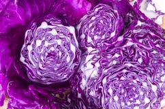 美丽的紫色圆白菜 免版税图库摄影