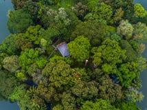美丽的绿色庭院的顶视图空中射击 免版税库存图片