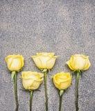 美丽的黄色玫瑰花束在土气花岗岩背景中,被排行的行,顶视图边界,文本的地方 免版税图库摄影