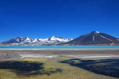 美丽的绿色盐水湖,在山口旧金山和Nevado Ojos台尔Salado附近的拉古纳Verde,阿塔卡马,智利 库存图片