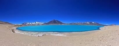 美丽的绿色盐水湖,在山口旧金山和Nevado Ojos台尔Salado附近的拉古纳Verde,阿塔卡马,智利 库存照片