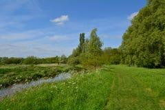 美丽的绿色草甸在与附近森林/木头和河的夏天, Waltham修道院,英国 免版税图库摄影