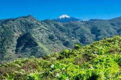 美丽的cinchado包括著名横向国家公园岩石场面雪teide tenerife 免版税库存图片