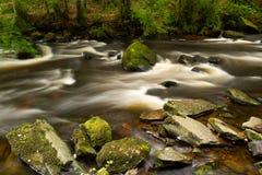美丽的clare小河幽谷 库存图片