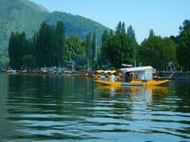 美丽的Dal湖在克什米尔8 免版税库存照片