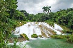 美丽的El Nicho瀑布古巴 免版税库存图片