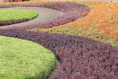 美丽的garden8 免版税库存照片