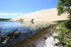 美丽的Genipabu盐水湖和沙丘 免版税图库摄影