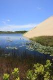 美丽的Genipabu盐水湖和沙丘 图库摄影