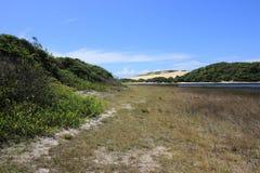 美丽的Genipabu盐水湖和沙丘 免版税库存照片