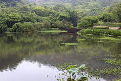 美丽的jinghu (安静的湖) 免版税库存图片