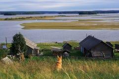 美丽的Kenozero上面风景狗从后面看法 俄国北部村庄 Kenozerye 阿尔汉格尔斯克州地区,俄罗斯 蓝天 库存图片