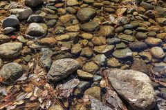 美丽的merced河在优胜美地国家公园 免版税图库摄影
