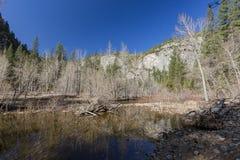 美丽的merced河在优胜美地国家公园 图库摄影