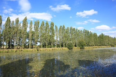 美丽的Poitou-Charentes在法国 库存照片