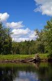 美丽的raquette河 库存照片
