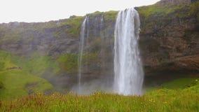 美丽的seljalandsfoss瀑布在冰岛在夏天 影视素材