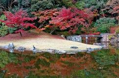 美丽的Sento故宫皇家维拉公园秋天风景在京都 免版税图库摄影