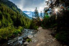 美丽的Tatry山风景五湖谷 免版税库存图片