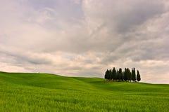 美丽的toscana 免版税图库摄影
