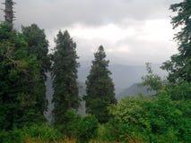 美丽自然scenary巴基斯坦 免版税库存图片