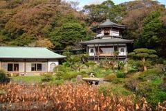美丽,五颜六色的日本庭院,镰仓 库存照片