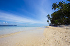 美丽,惊奇,与高的棕榈的美妙的海岛海景 库存照片