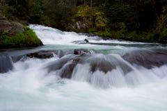 美丽,狂放的快速流动的原野河 库存照片