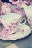 美丽,英语,与日本樱桃树开花的葡萄酒茶杯,关闭 库存照片