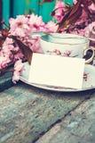 美丽,英语,与日本樱桃树的葡萄酒茶杯开花, 免版税库存图片