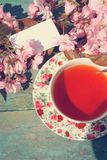 美丽,英语,与日本樱桃树的葡萄酒茶杯开花, 库存图片